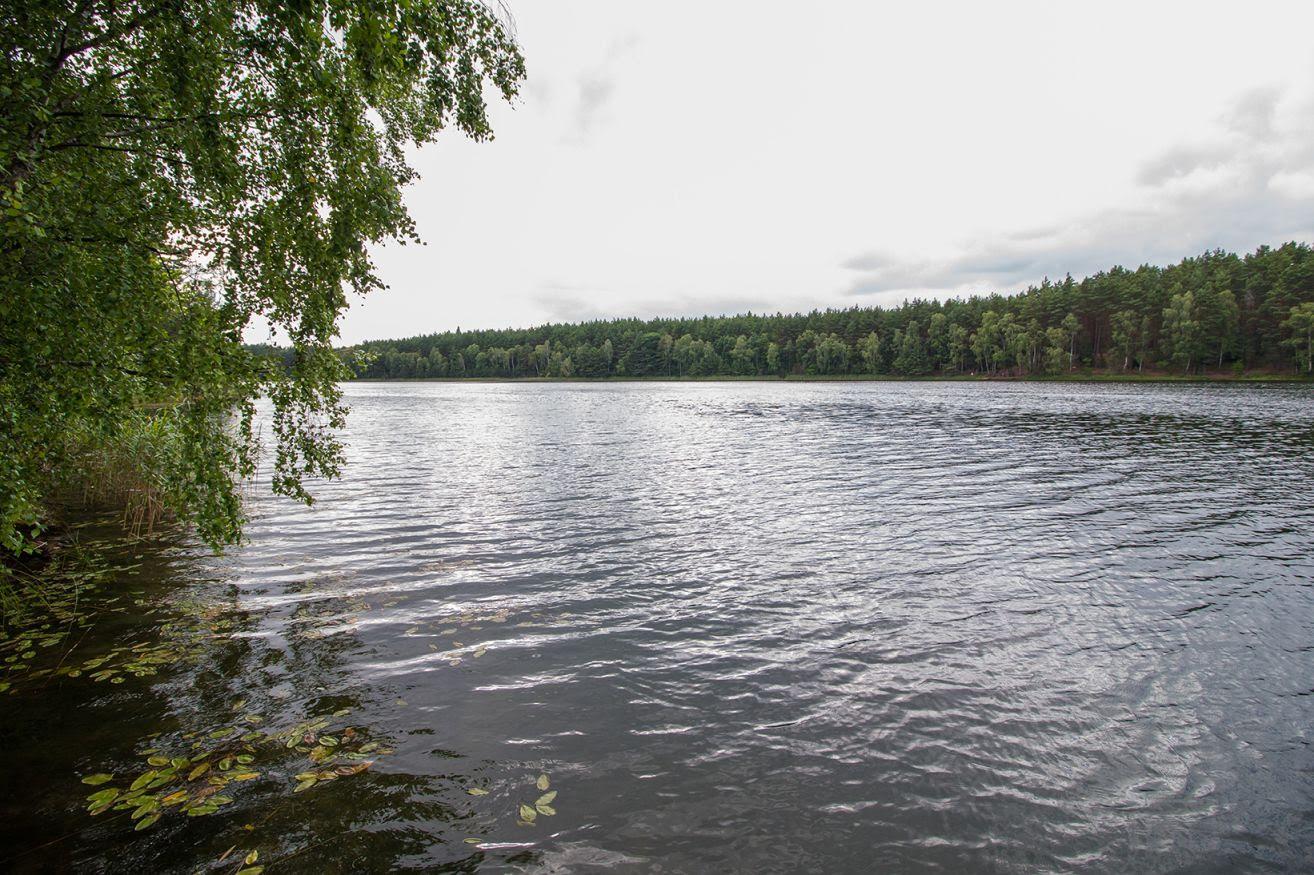 Obóz Rybno